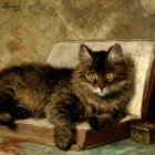 Henriette-Ronner-Knip42